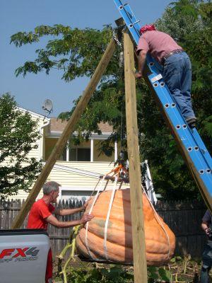 Pumpkin lifting tripod