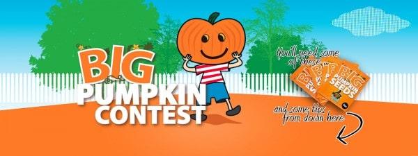 pumpkins-banner-large