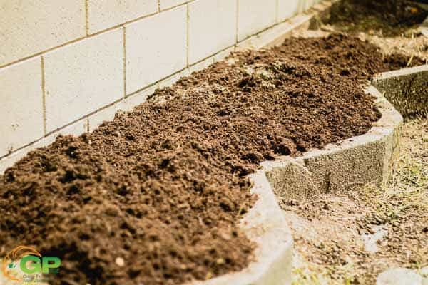 Compost added to the patch