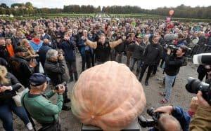 New World Record – 2624.6 lbs Mathias Willemijns