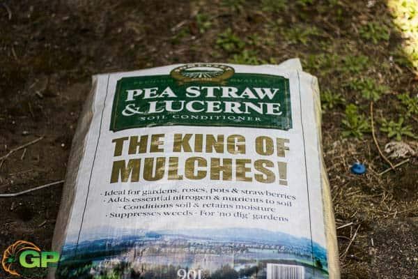 Pea Straw Bag
