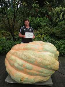 NZ record giant pumpkin 754.5kg