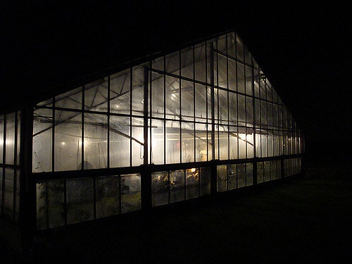 Greenhouse lit up at night