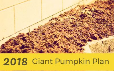 What is the 2018 Giant Pumpkin Plan?
